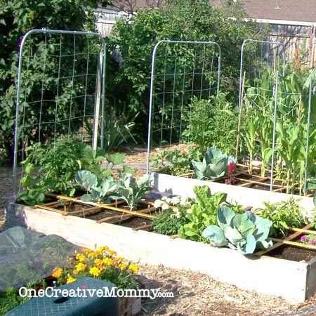 DIY #Garden #Trellis From OneCreativeMommy.com {Step By Step Instructions  For Creating