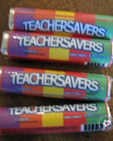 LIfesavers/Teachersavers