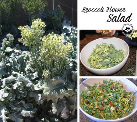 Summer Broccoli Salad made with Broccoli Flowers {OneCreativeMommy.com}