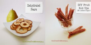 Dried Pears and Fruit Rolls