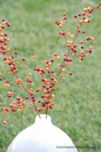 Fast and Frugal Fall Decor {OneCreativeMommy.com} Fill vases and bowls with real Fall leaves for a quick and easy centerpiece or Fall mantel