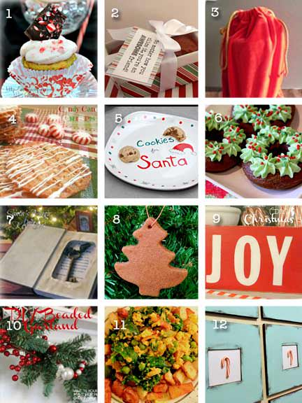 If you missed my 12 Days of Christmas Guest Post series, be sure to check out these fantastic ideas!