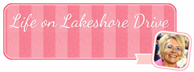 Life on Lakeshore Drive Guest Post