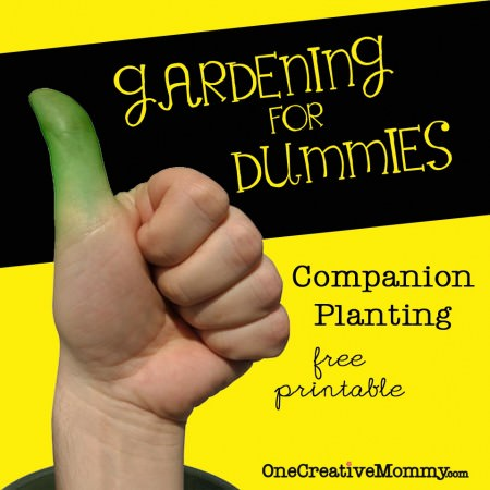 #Companion #Planting--Which #Garden Plants Grow Well Together? Free Printable from OneCreativeMommy.com