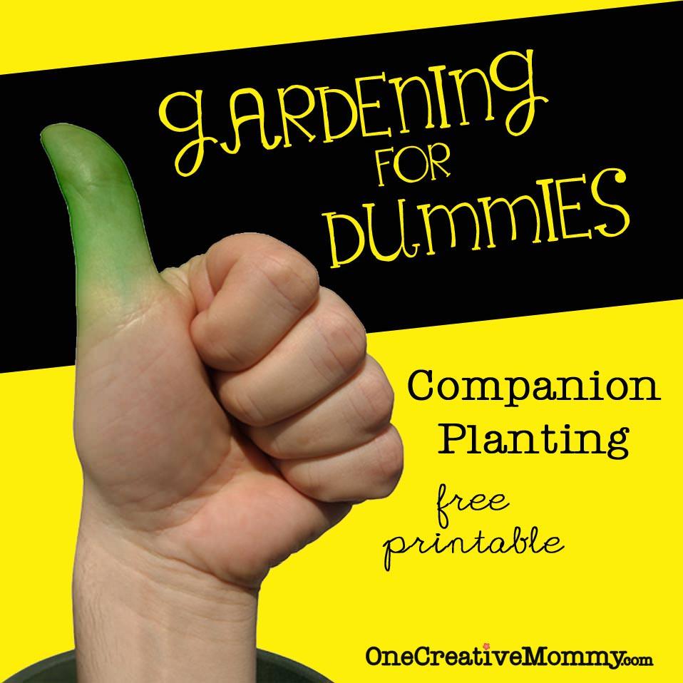 Gardening For Dummies Companion Planting Free Printable