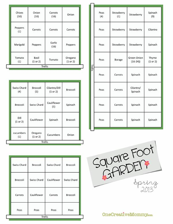 Square Foot Garden Plans for Spring onecreativemommycom