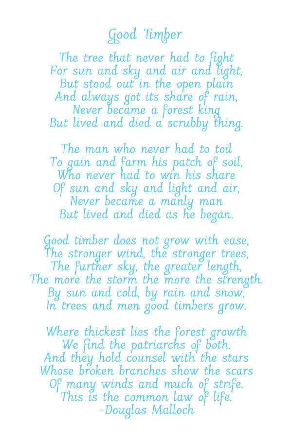 Good Timber--The Stronger the Wind, the Stronger the Trees {We are strengthened by adversity}