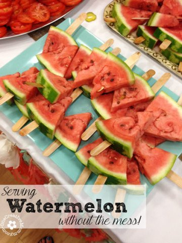 Watermelon on a Stick-- All the yummy flavor without the sticky mess! {OneCreativeMommy.com} #familyreunion