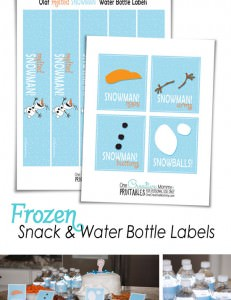 Frozen Printables {Snack and Water Bottle Labels--Perfect for a Frozen Party} OneCreativeMommy.com