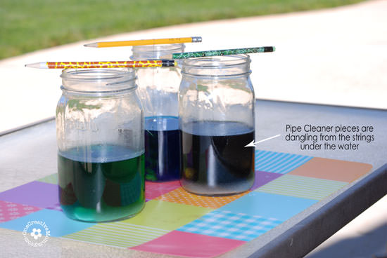 How to Make Crystals -- Science for Kids! {Project Setup} OneCreativeMommy.com
