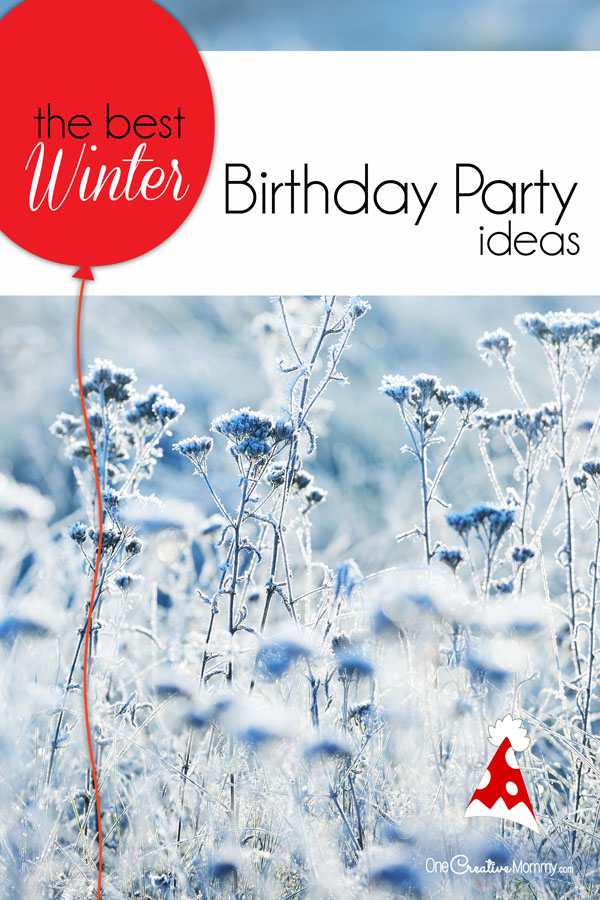 The Perfect Winter Birthday Party Ideas onecreativemommycom
