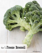 How to Freeze Broccoli -- Home frozen broccoli tastes so much better than store bought! {OneCreativeMommy.com}
