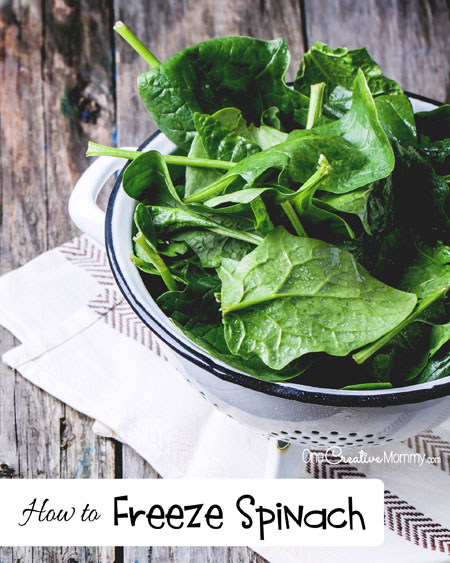 How to Enjoy Your Garden Spinach All Year Long!