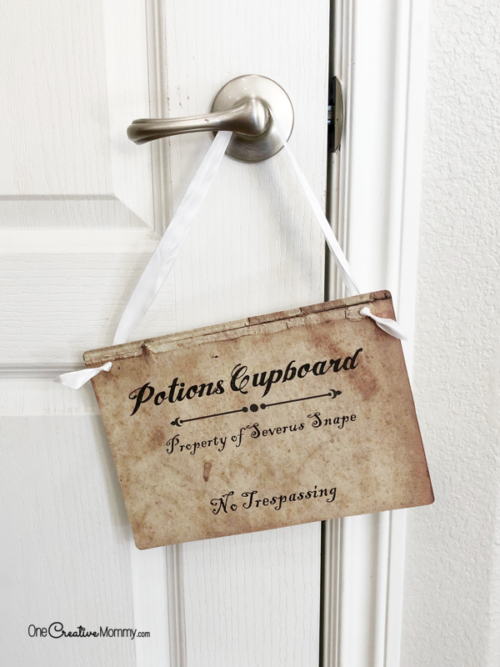 Severus Snape's Potions Cupboard printable